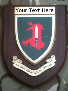 Infantry Battle School Brecon IBS Personalised Military Wall Plaque